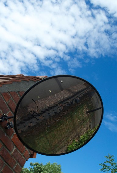 Mirror in Lens